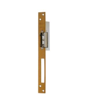 Iseo Electric Door Opener